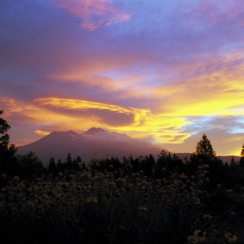 Mount Shasta Bed & Breakfast