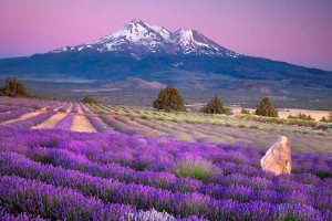 7th Annual Sacred Journey to Mount Shasta