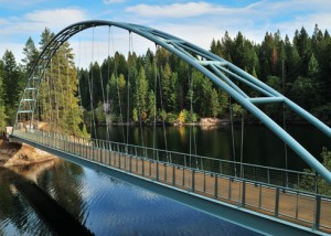 Foot bridge at Lake Siskiyou